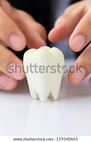 Hand Holding Molar,dental concept