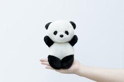 hand holding panda doll, black rim of eyes,panda toy on white background