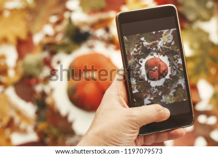 Hand holding phone and taking photo of stylish autumn flat lay of pumpkin in leaves wreath with berries, nuts, acorns on white background. Modern mobile photography. Happy Thanksgiving