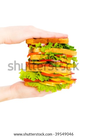 Hand holding sandwich isolated on the white background