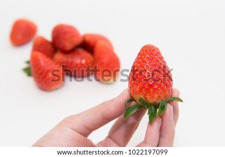 Hand holding strawberry on white background,Fresh strawberry in hand on white background, #1022197099