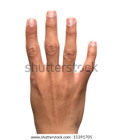 Hand Holding Up 4 Fingers Stock Photo 15391705 : Shutterstock