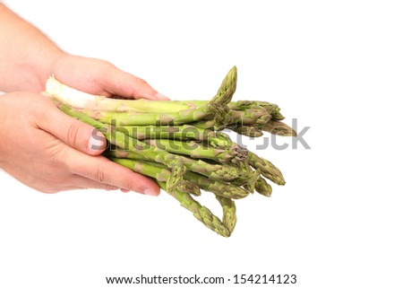 Hand holds fresh green asparagus bunch. White background.