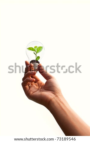 Hand holds green plant in light bulb, can be used for green concept