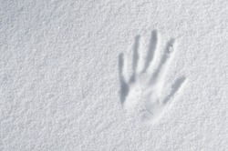 hand impression in fresh snow