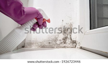 hand in glove sprays the product on angle between door and white wall from black mold.dangerous fungus that needs to be destroyed.It spoils look of house and is very harmful parasite for human health Photo stock ©