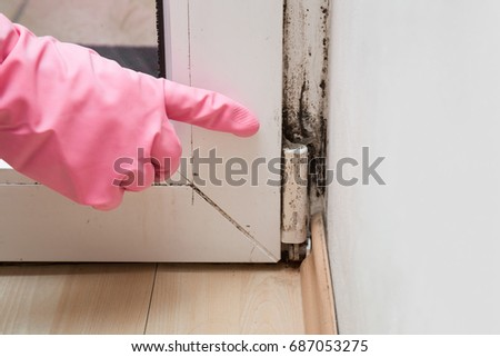 Hand in rubber protective glove pointing to the mold in the window corner.