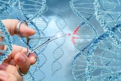 Hand inserts a molecule into DNA concept design.