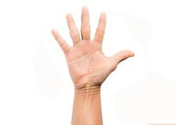 Hand man on white background.