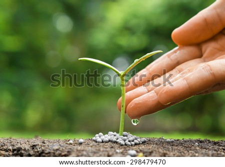 hand nurturing and watering a young plant / Love and protect nature concept / nurturing baby plant - Shutterstock ID 298479470