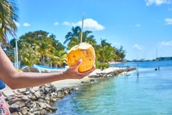 Hand of black woman holding coconut with drinking straw at caribbean coast / Fresh coconut drink directly from the fruit / Caribbean lifestyle