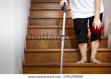 Hand of female elderly holding her pain knee with hand and walking stick for support when walking,old age has an injury,painful in the joint and bone in her knee,symptoms of Osteoarthritis,Arthritis Photo stock ©