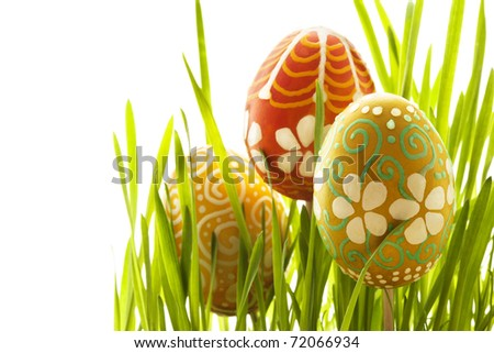 Hand painted Easter eggs and green grass #72066934