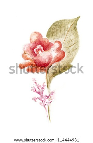 Hand Painted Flowers in Watercolor Paintings