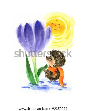 hand painted illustration: Hedgehog and Crocus
