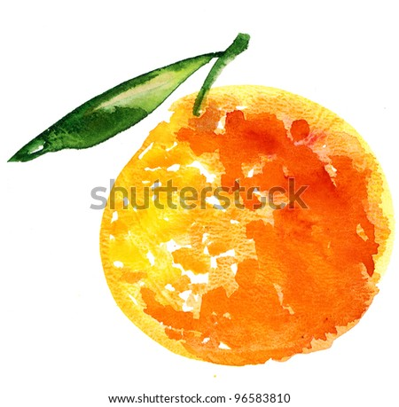 hand painted illustration of orange fruit.  watercolor drawing red citrus with leaf. paintings of organic food. Fresh exotic fruit.