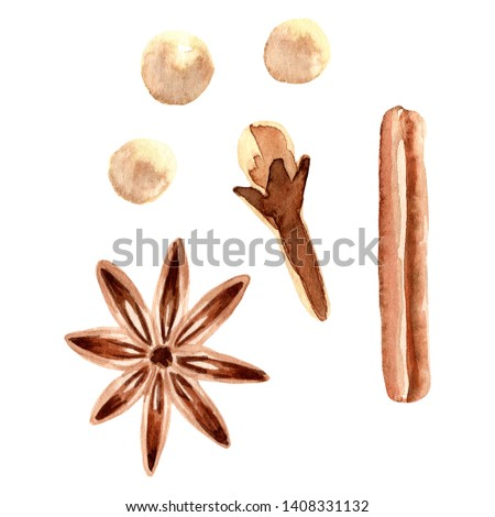 Hand painted watercolor anise, white, pepper, cloves, cinnamon set. Isolated on white background. Watercolor hand drawn illustration for logo, packaging, print, organic food, sweetness, fruit shop.
