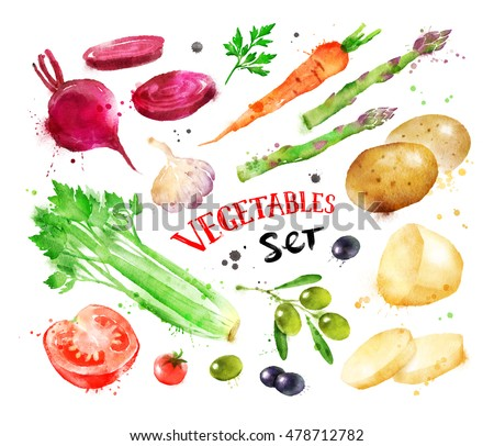 Hand painted watercolor colorful set of vegetables