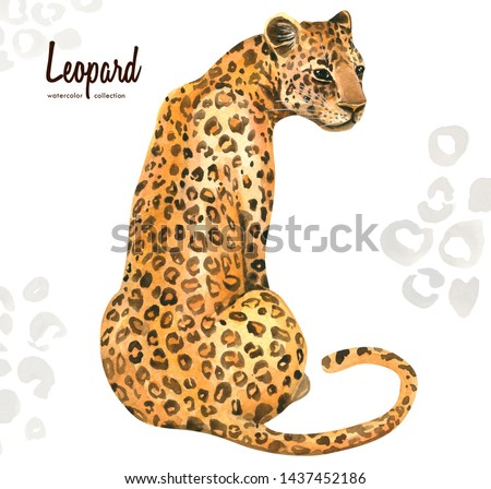 Hand painted watercolor exotic wild cat Leopard, isolated on white background. Illustration of a realistic animal perfect for print, cards, posters and parties. The trend of an exotic summer print.