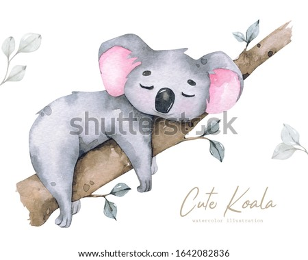 Hand painted watercolor tropical illustration with cartoon cute koala, isolated on white background.