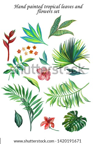 hand painted with gouache troplical isolated set with compilation of tropic foliage and flowers. Monstera leaf, areca palm leaf, fan palm leaf, pink hibiscus, small flowers, red heliconia flower.