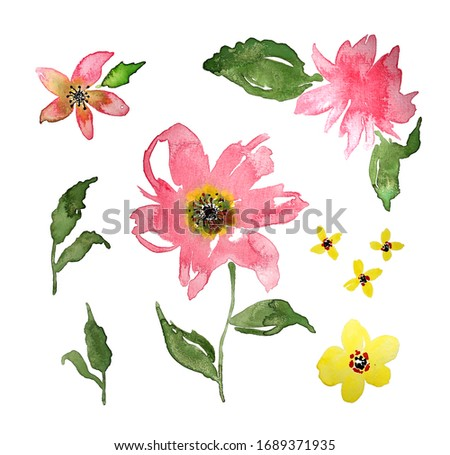 Hand Painting Abstract Watercolor Peony and Wild Flowers Leaves Design Set Isolated White Background Pattern