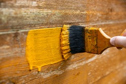 Hand painting old fence with fresh paint, using paint brush. Back garden wooden fence renewal.