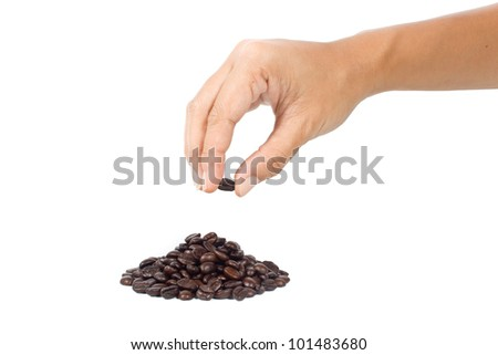 Hand picking  up  the coffee bean on  white background