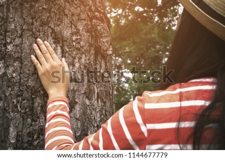 Hand placed on the trunk of a big tree with fingers extended, symbolizing the connection between humans and nature concept.