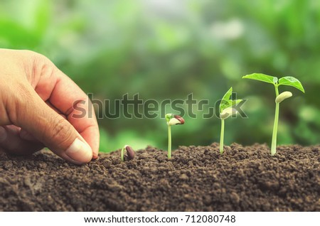 hand planting seed in soil plant growing step concept - Shutterstock ID 712080748