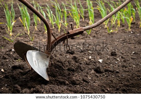 Hand plow on the field. Plowing the ground before sowing. Close-up.