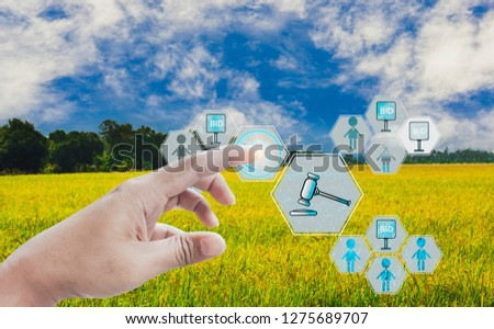 Hand press button participate in auction,icon of agricultural product auctioneer,with sky background and organic fields, concept offer of agricultural products and futures trading advanced technology #1275689707