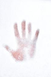 Hand print on the snow.