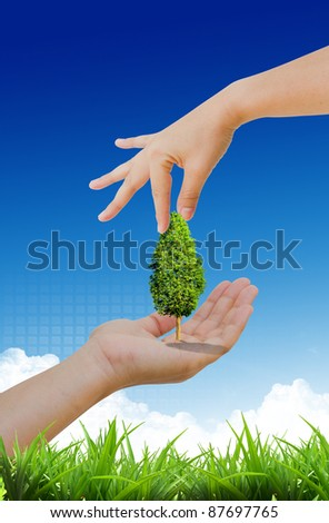 hand propose tree in the nature
