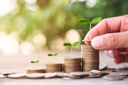 Hand putting coin on dollar coin stack growing graph with green bokeh background,investment concept.tree growing on coin,Business Finance and Save Money concept