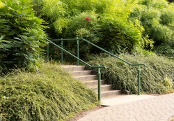Hand rail steps and shrubbery