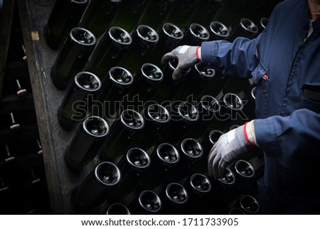 Hand remuage of champagne in the cellar Foto stock ©