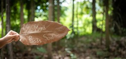 hand shows word like Mind, Body, Soul  that wrote on  dried leaf with blurry jungle or forest  as background. concept for life balance , wellness, mediatation.