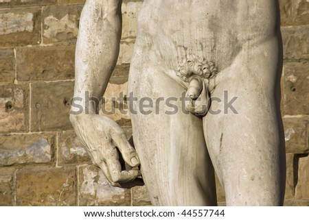 hand, torso and penis of David of Michelangelo, Florence, Italy