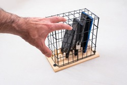 hand trying to catch three mobile phones locked in a cage with a padlock, concept of social isolation or phone abuse and social networks, white background, horizontal
