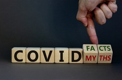 Hand turns cubes and changes the expression 'covid myths' to 'covid facts'. Beautiful grey background. COVID-19 pandemic concept. Copy space.