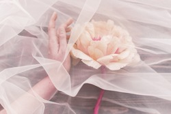 Hand under tulle gently holding peony flower on dark background. Modern floral aesthetic, pink trendy tone. Tender pink peony behind veil.
