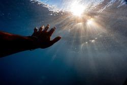 Hand underwater reaching for sunlight