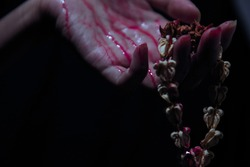 Hand with bleeding is catching the dried flower garland situate on a black background.
