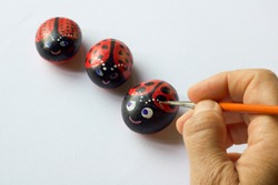 hand with brush painting three  stones as ladybugs, white background