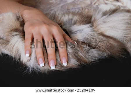 Hand with french manicure on furs