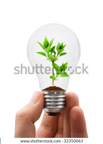 Hand with lamp and plant isolated on white background
