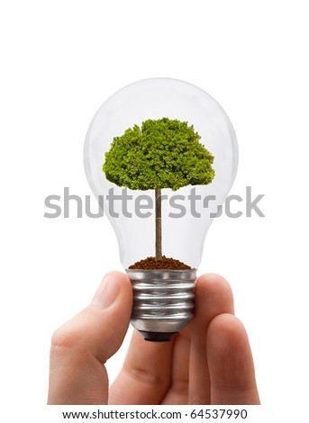 Hand with lamp and tree isolated on white background