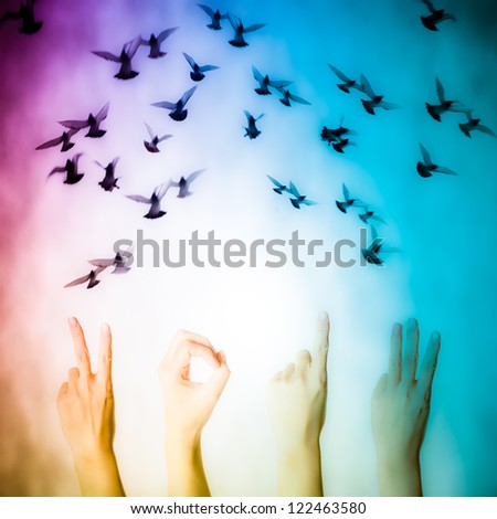 hand with 2013 number and flying doves new year background