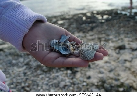 hand with seashell detail #575665144